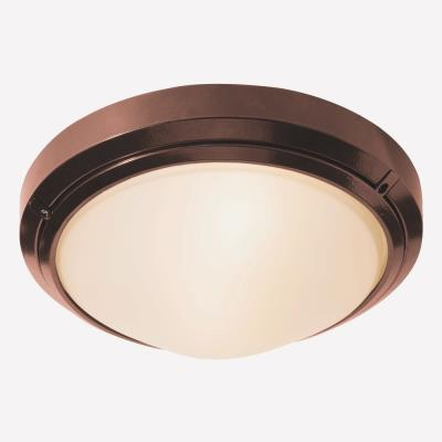 Access Lighting 20355 Oceanus Wet Location Ceiling or Wall Fixture