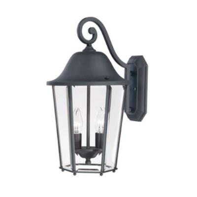 Savoy House 5-6212-BK Truscott - Two Light Outdoor Wall Mount
